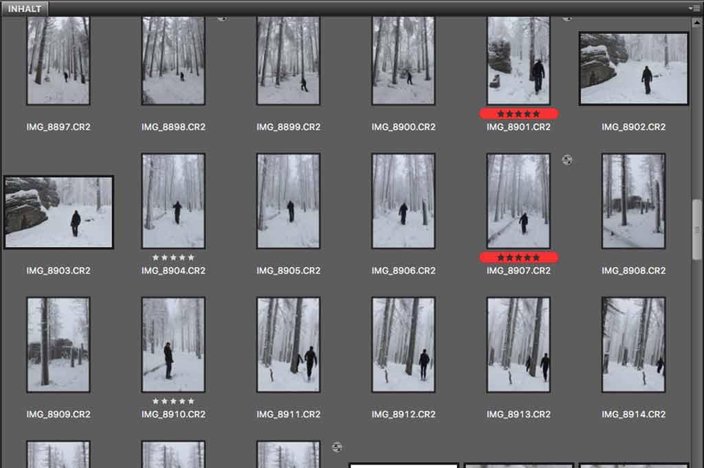 Adobe Camera Raw, eine Alternative zu Lightroom?