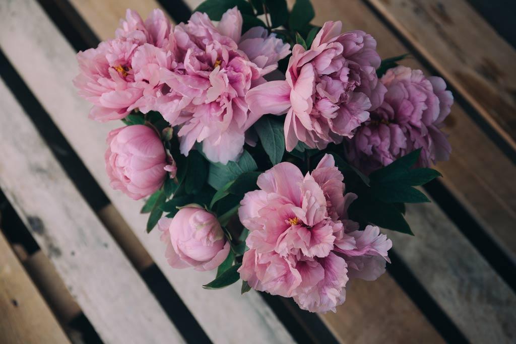 Tipps für wunderschöne Frühlingsbilder
